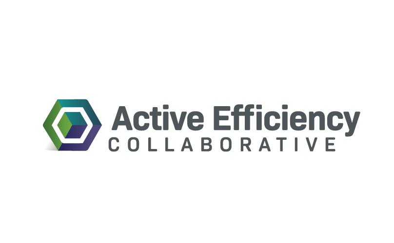 Active Efficiency