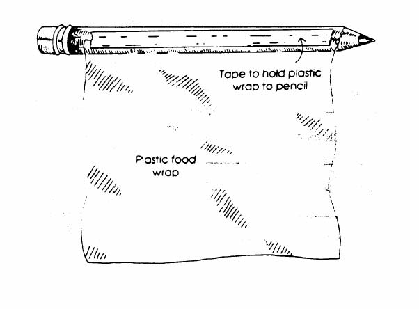 Diagram of plastic food wrap taped to pencil