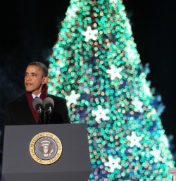 the 35 foot national christmas tree is designed with just under 50000 sets of programmed color changing led lights and starburst ornaments yet only uses