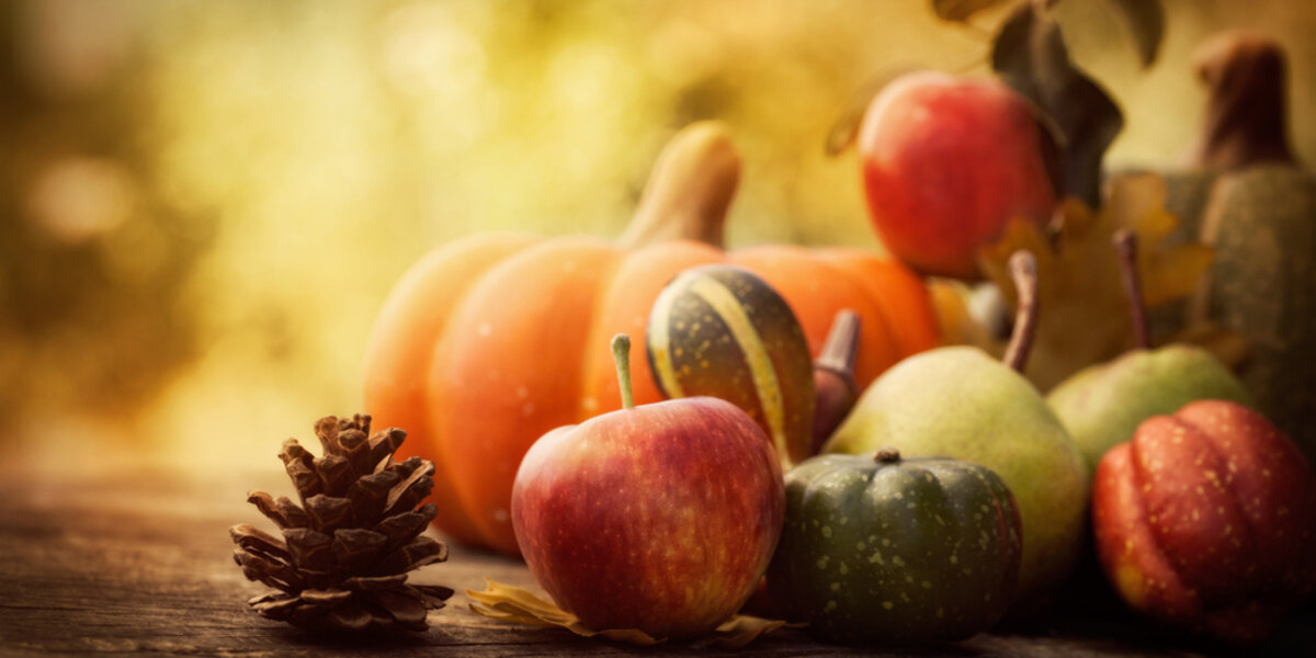 """Thanksgiving is the least energy consuming holiday — and provides the opportunity for the Alliance to say """"thanks""""!"""